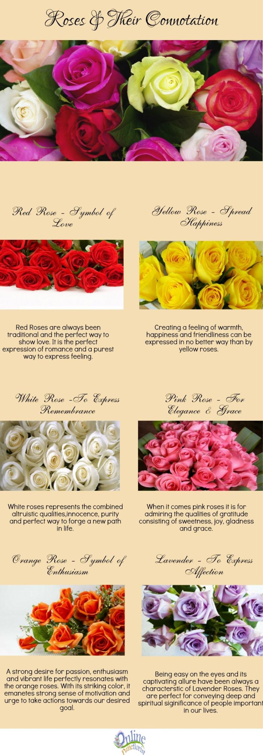 Roses The Meaning Of Happiness Benefits Of Roses Lifestyle Glitz
